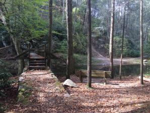 Paint Creek Recreation Area, Greeneville
